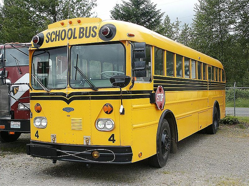 1973 Model 318D-12