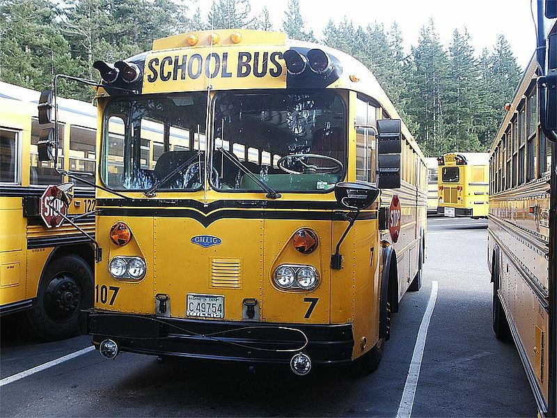 1979 Gillig Model VTF555D school bus