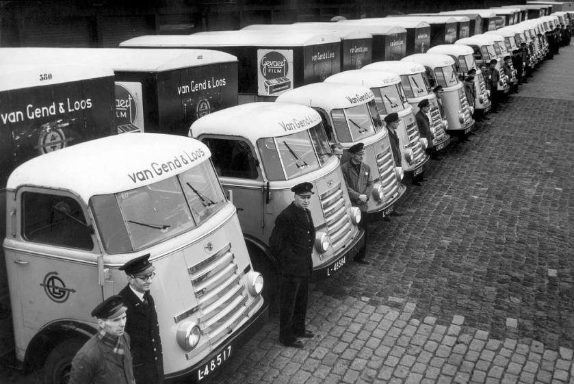 1954 DAF's 7 van Gend en Loos