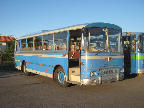 1958 fiat 309 Menarini
