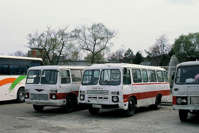 27 Pyongyang buses