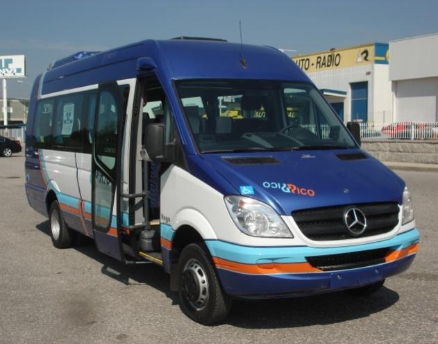 CAMO VEGA Mercedes Benz Sprinter 516-519