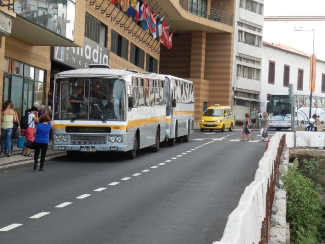 Camo Volvo 1055