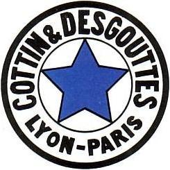 019 logo blauwe ster