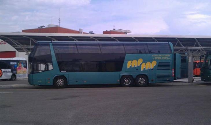 FAP 491