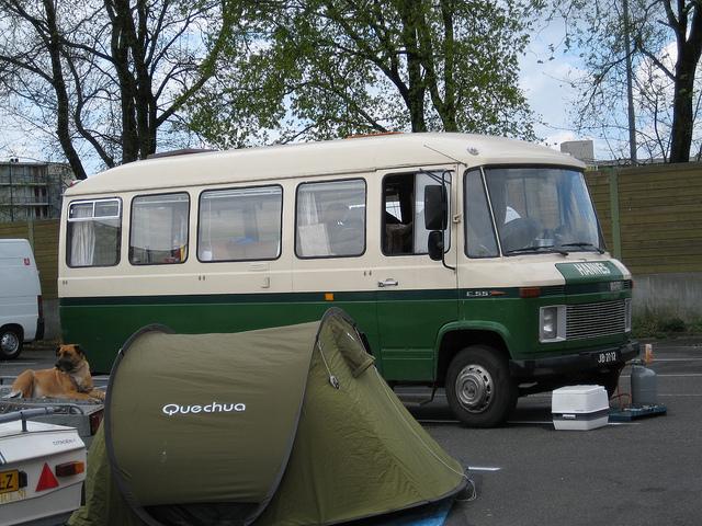 1974 hanomag-henschel-f55