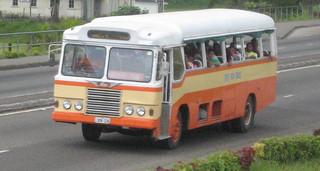 1969 Tebara Bus Hino - BN 336