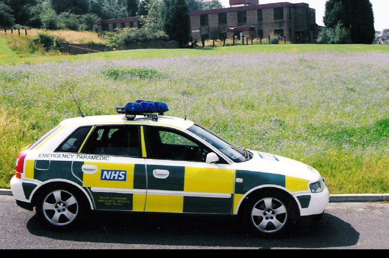 2003 Audi A3 RVV Artsenuitvoering
