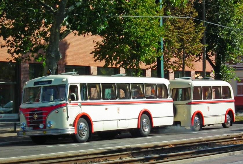 IFA Bus +