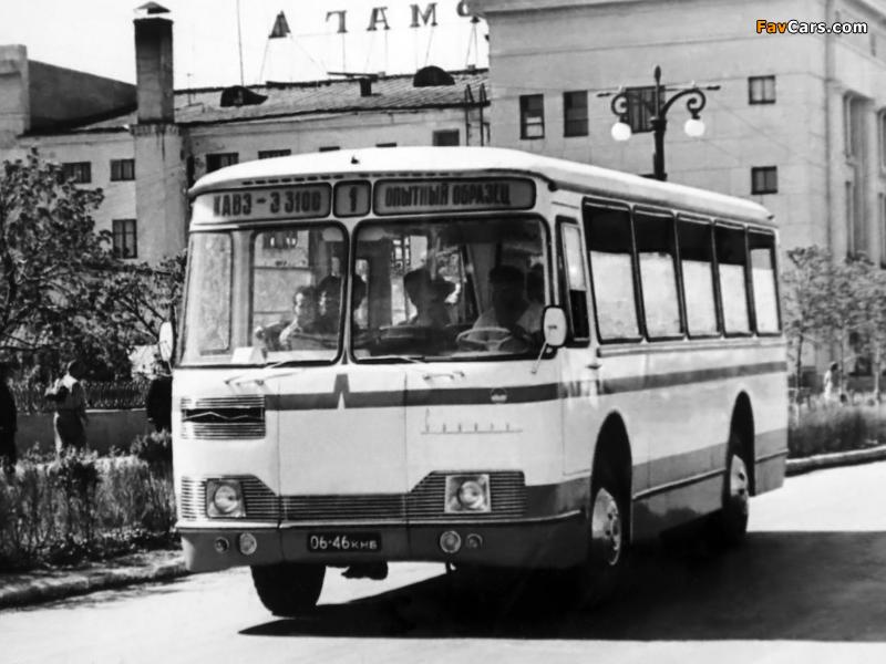 1963 kavz 3100 sibir