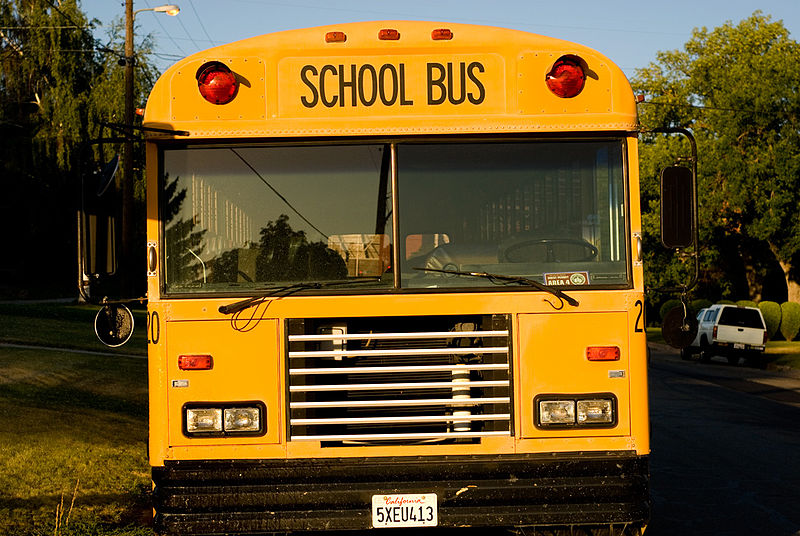 Ward President School Bus