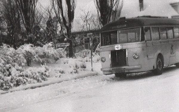 1950 Scania-Vabis nr. 74 met carrosserie van Verheul. Uit dienst als nr.39 in 1962
