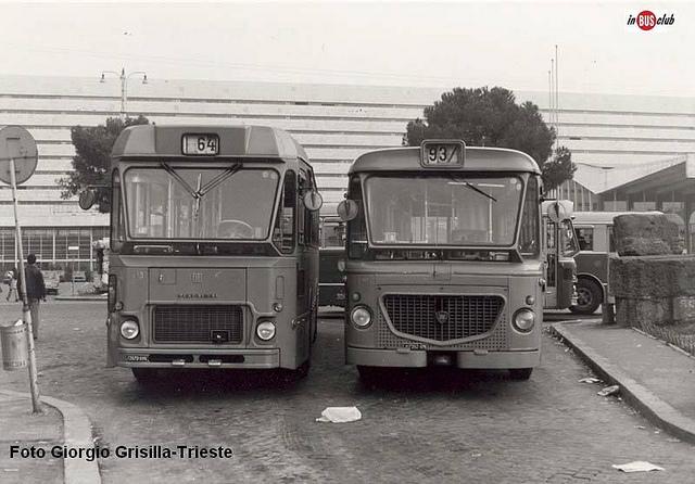 1974 Fiat 410 Breda Pistoiesi e Lancia Esagamma Portesi ATAC Roma - Gennaio 1974