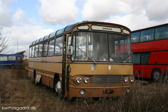 Leyland LOPSUC 1-11 - DAB