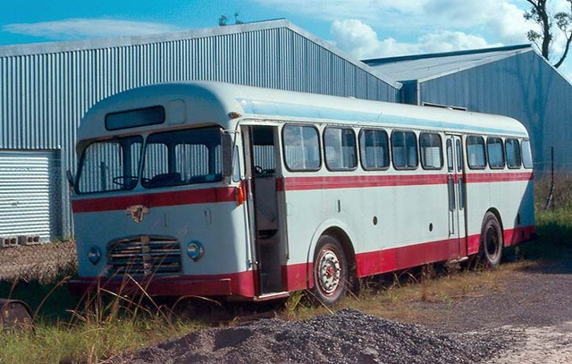 Leyland Royal Tiger Patgay Aus