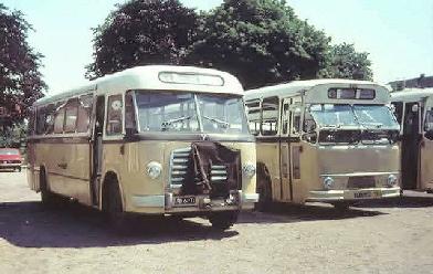 1955 MAN 530 SOC1 MAN D 1246M2 carr Verheul GTW 165 en GTW 515