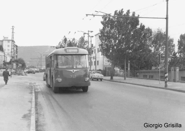 1956 Trolleybus Macchi