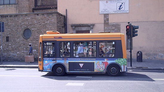 Bredamenarini small pretty-bus