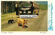 CANADIAN ROCKIES POSTCARD BEARS CROSSING ROAD MCI COURIER