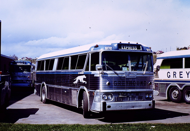 Greyhound Canada bus G172 (MCI MC-3)