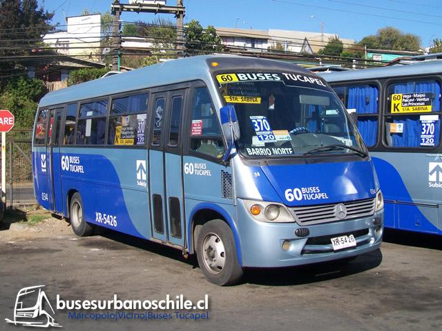 Marcopolo Vicino Buses Tucapel