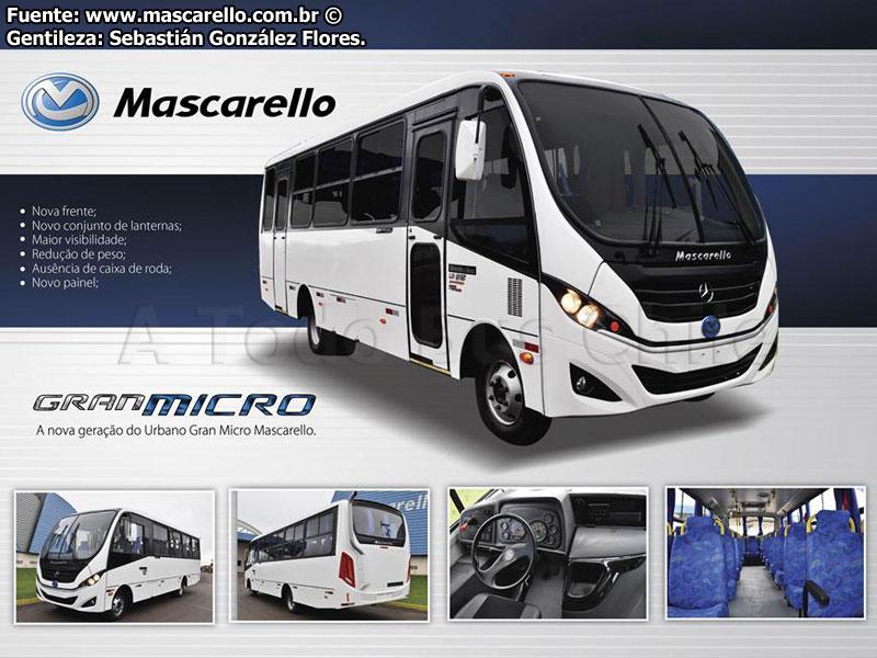 Mascarello Gran Micro 2013