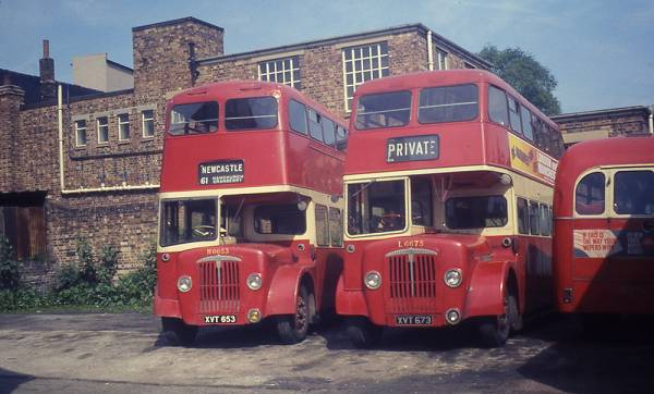 1956 Daimler CVG5 with Northern Counties L31-28RD bodywork