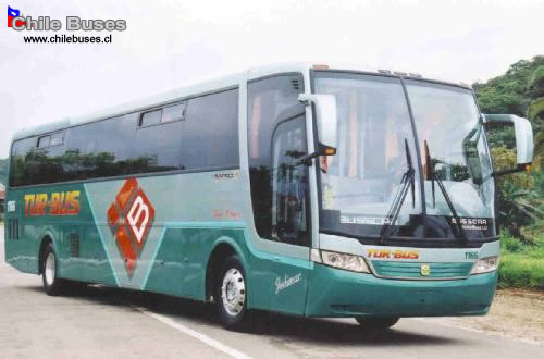 Busscar Vista Bus Lo BusesTurBus