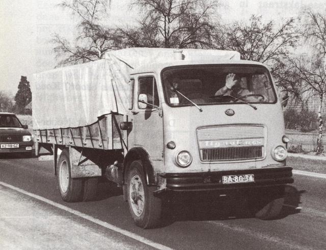 om tigrotto-65-01