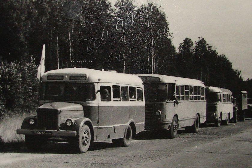 PAZ Buses in Vologda 84