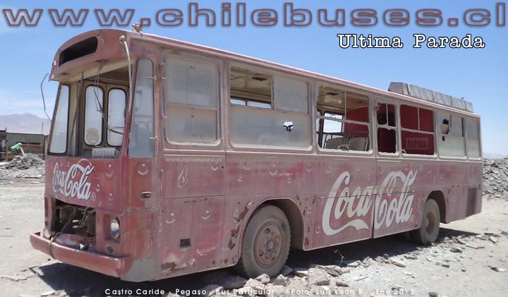 Pegaso Bus Particular Foto
