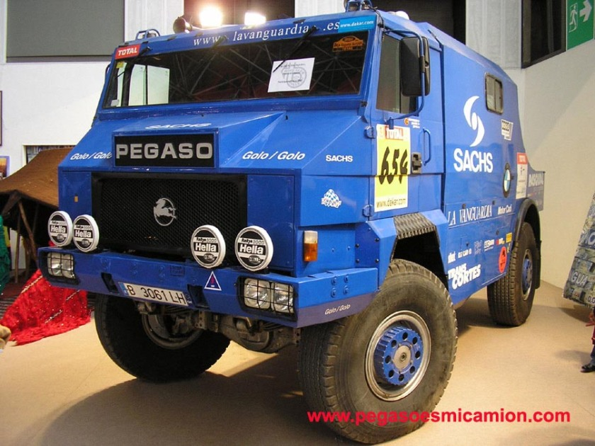 Pegaso Dakar (2)