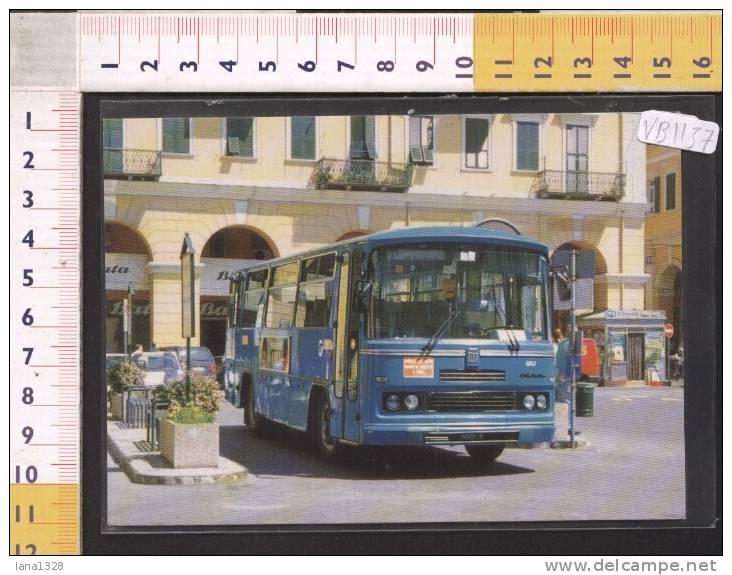 VB1137 AUTOBUS PULLMAN FIAT 308 ORLANDI IM 127233 PARCO RT NUMERO SOC 5057 IMPERIA