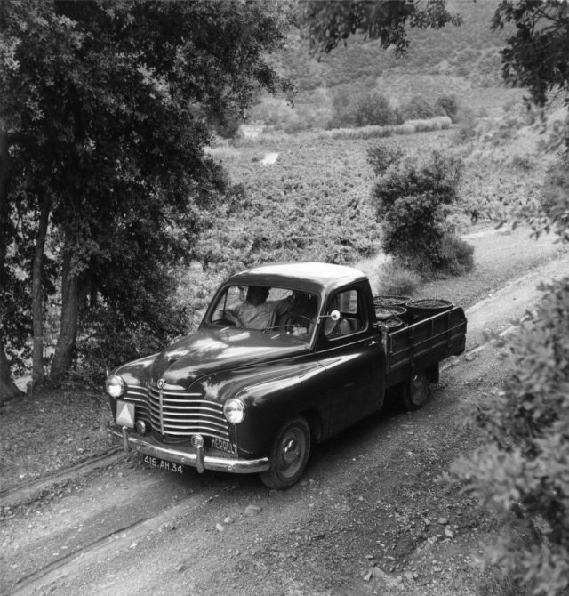 1950 Renault Colorale Pick-up