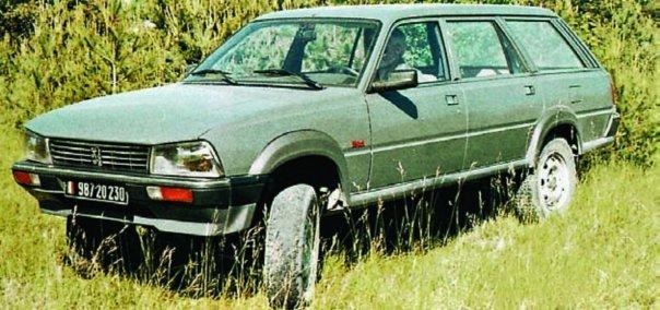 1987 Peugeot-Dangel 505, 4x4