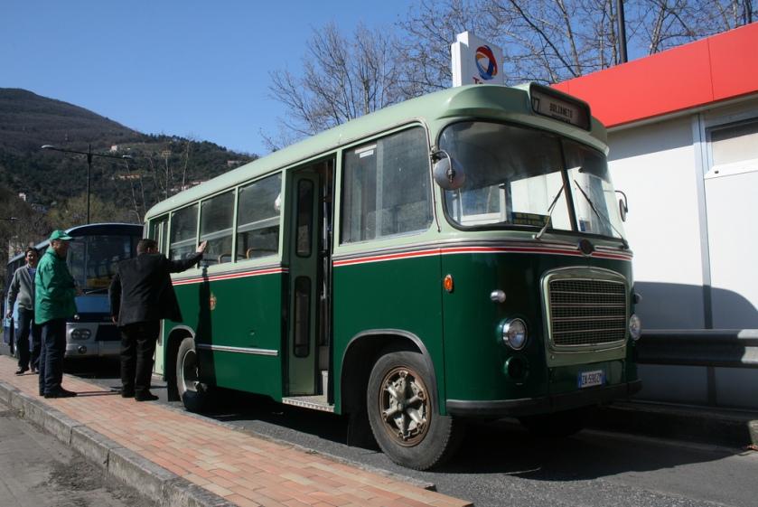 Bussen OM Tigrotto Portesi