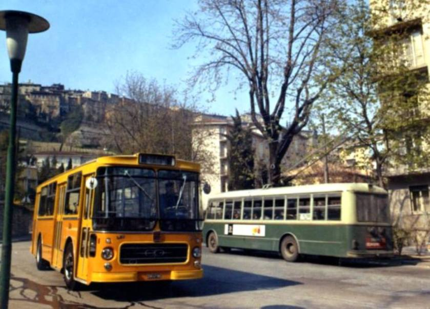 Fiat Portesi e filobus
