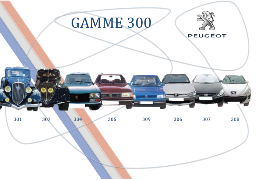 Peugeot Gamme 300