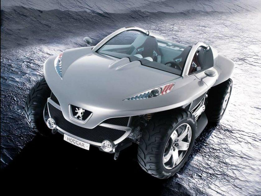 Peugeot Hoggar picture