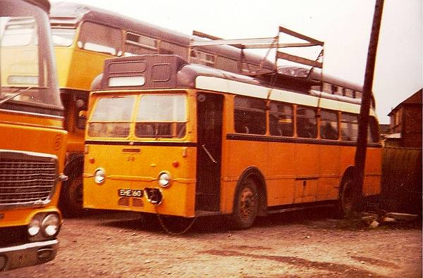 1952 Leyland Royal Tiger with Roe bodywork
