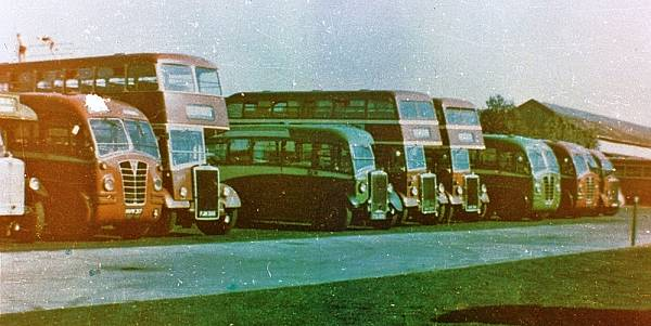 1938 Leyland TS7Ds LT25, DUC901, and LT22, CYO194, alongside Regal MV2272 with Heaver body a