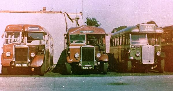 1938 Leyland TS7Ds LT25, DUC901, and LT22, CYO194, alongside Regal MV2272 with Heaver body