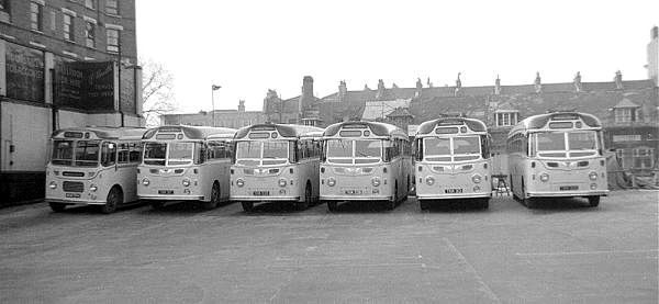 1954 AEC Reliances with Harrington C37C bodies