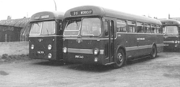 1954 Leyland Tiger Cubs, 375 with a Weymann body and 343 with a Saunders-Roe body