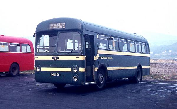 1954 Leyland Tiger Cubs were purchased by Thomas Bros. Nine were Weymann bodied and nine carried Saro B44F bodies