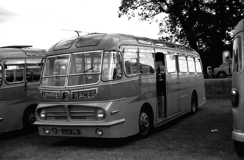 1955 Leyland PSUC1-2 Tiger Cub SJJ316 which had a Harrington Wayfarer IV C41C body
