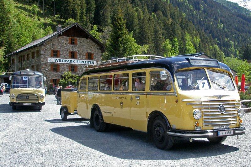 1955 Postbus Steyr 480a