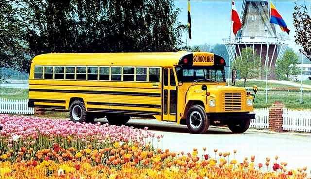 1978 International on Loadstar Chassis.