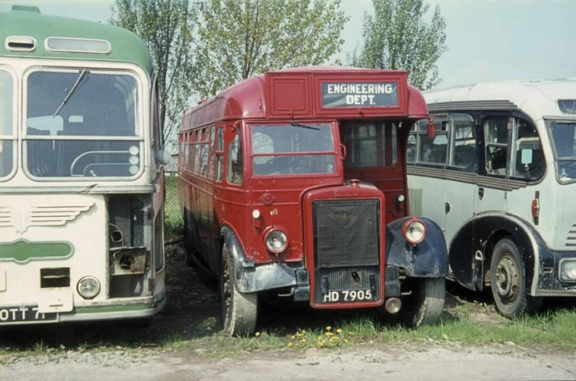 1948 Leyland Tiger PS1 with Brush B34F body 7905