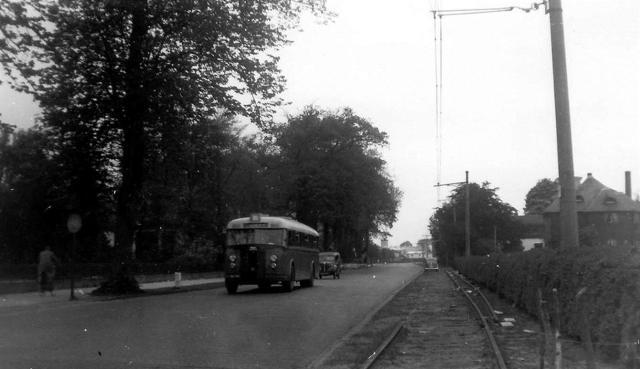 1949 Bussen Crossley Werkspoor 19 NS 1342 NZH Lisse NL